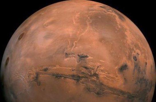 На красной планете найден череп гигантского доисторического ястреба