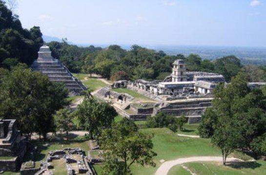 Стало известно, из-за чего погибли майя